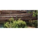 pontalete de eucalipto Morumbi